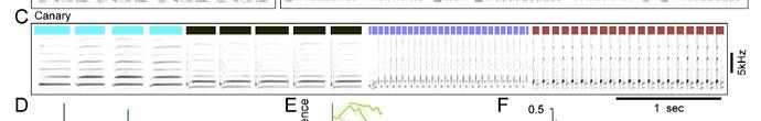 Screen Shot 2020-09-25 at 3.24.14 PM
